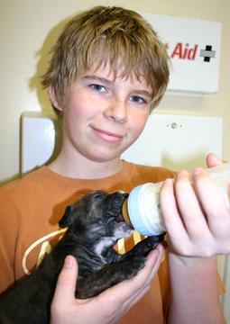 puppy bottle fed by basil intern web