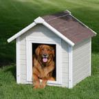 dog%20house[1]