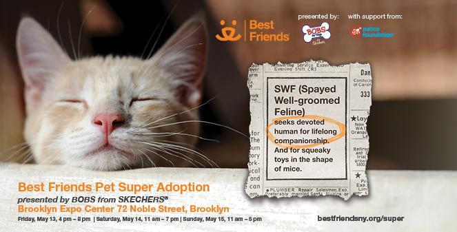 BF NYC Spring Super 2016_663x337