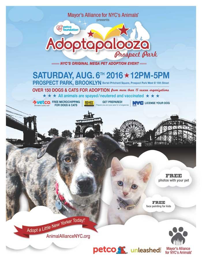 2016-08-06-Adoptapalooza