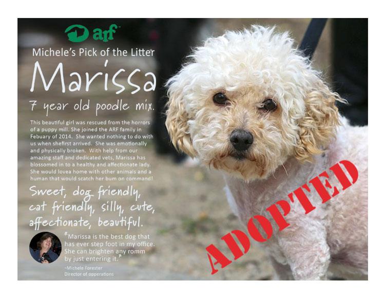 marissa-adopted-750